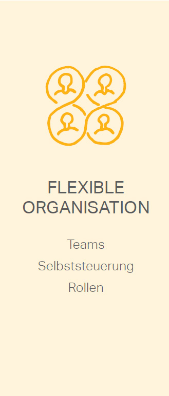 insight_agilereOrganisation_flexibleOrganisation